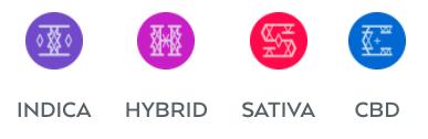 indica hybrid sativa cbd